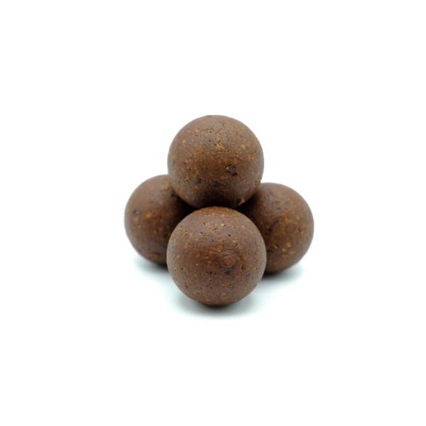 Sacher Tort als Kugel - viel Kakao mit süßer Aprikose - Bio- und Rohkost